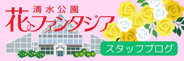 清水公園花ファンタジア公式ブログ